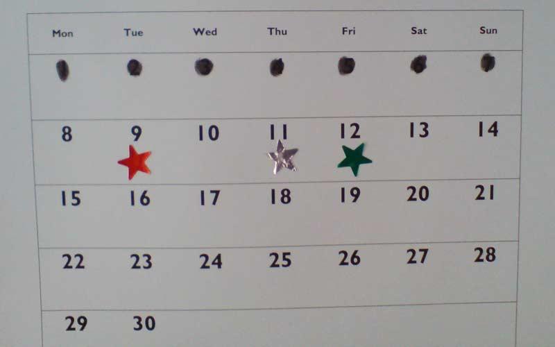 2nd-week